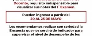 PRIMERA ENCUESTA DE RENDIMIENTO DOCENTE - CICLO ORDINARIO 2019-I